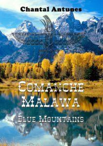 Comanche Malawa Blue Monntains