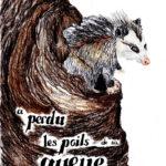 """""""Comment l'opossum a perdu les poils de sa queue ?"""". DVD de Gisèle LARRAILLET"""