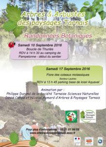 Randonnées botaniques ... à Pampelonne et Lautrec (81)