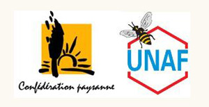 OGM ET APICULTURE : COEXISTENCE IMPOSSIBLE