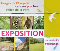 Exposition Pays Midi Quercy