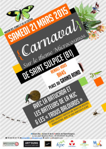 Carnaval 2015 - Saint-Sulpice (81)