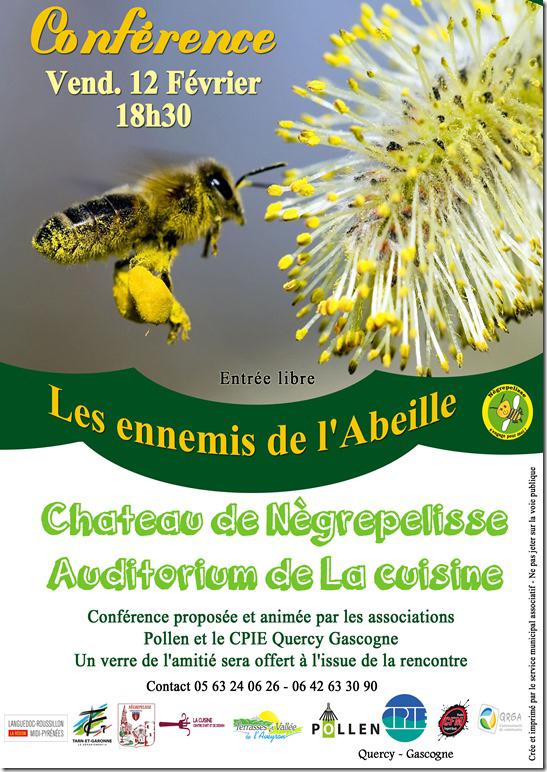"""Conférence """"Les ennemis des Abeilles"""" - Nègrepelisse (82)"""