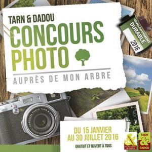 """Concours photo Tarn & Dadou - """"Auprès de mon arbre"""""""