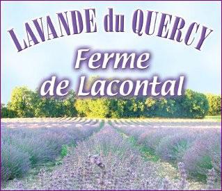 Ferme de Lacontal - 82190 Touffailles