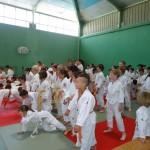 L'échauffement des judokas