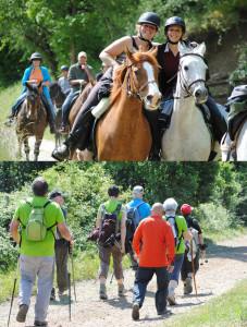 Rallye Équestre et Pédestre des 2 Rivières ... à Laguépie (82)