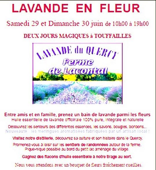 La Lavande du Quercy