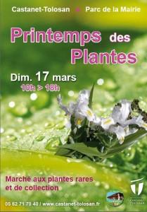 Printemps des Plantes à Castanet Tolosan (31)
