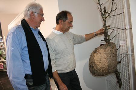 Association Pollen - Nègrepelisse (82)