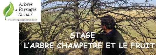 """Stage """"Arbres et Paysages Tarnais"""""""