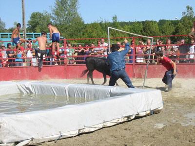 Toro Piscine à Monclar de Quercy (82)